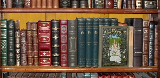 A bookshelf of beautiful books. A joy to look at, but a greater one to read! Image via Pixabay.