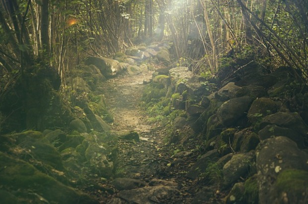 The way into the magical realm perhaps? Image via Pixabay.