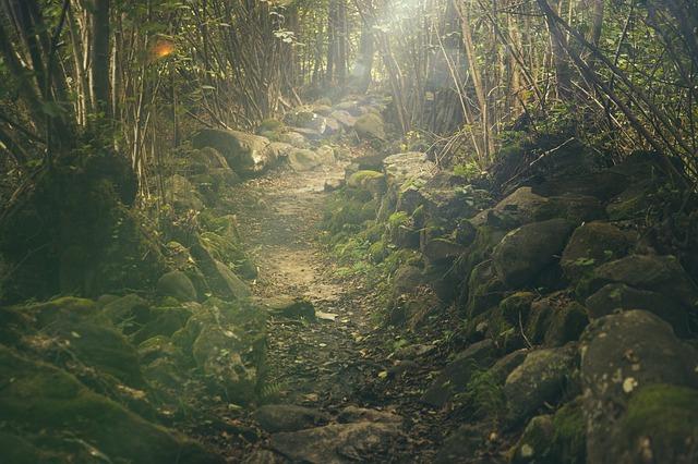 A way into the magical realm, perhaps? Image via Pixabay.
