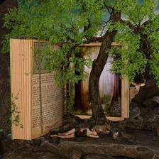 Grow as a writer? Grow your reading! Image via Pixabay