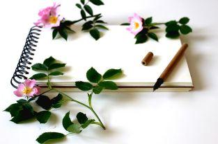 For jotting down those initial ideas. Image via Pixabay.