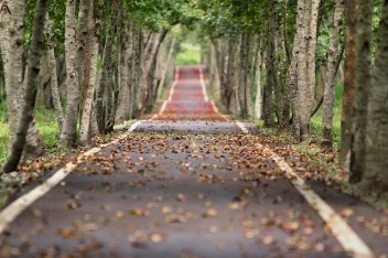 The road should not be an easy one for your hero/heroine. Image via Pixabay