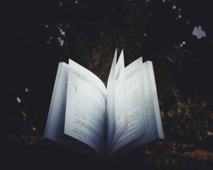 A good book will illuminate some truth. Image via Pexels