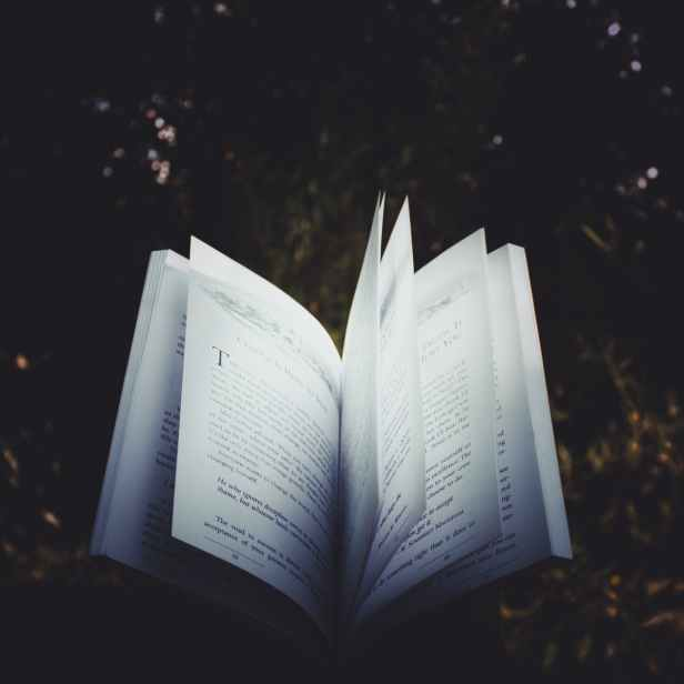 A good book will illuminate some truth. Image via Pexels