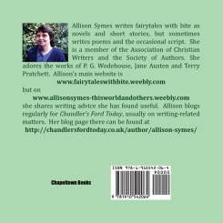Back cover of FLTDBA. Image by Allison Symes
