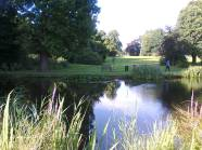 A lovely place to reflect during Swanwick. Image by Allison Symes
