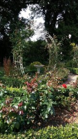 One of my favourite spots at Swanwick. Image by Allison Symes