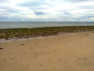 Golspie Beach in June - look at the crowds! Image by Allison Symes