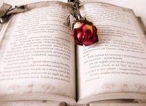 Reading should be a joy always. Pixabay image.