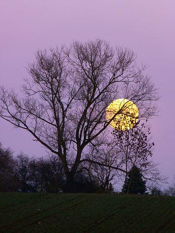 The moon rising. Pixabay image.