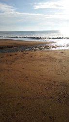 Love the sun glinting off the sea in Dorset. Image by Allison Symes