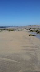 Dunnet Beach by Allison Symes