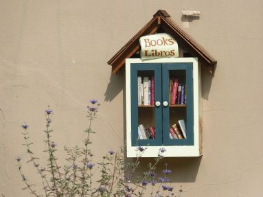 Glad to see the Little Library idea is speading.