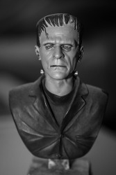 Mary Shelley's most famous creation