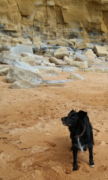 Lady having a good time at West Bay in Dorset. Image by Allison Symes.