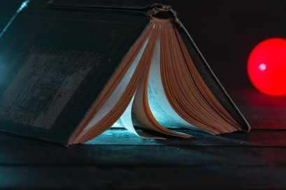 A good book, fiction or otherwise, will illuminate some aspect of life for you