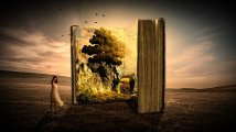 Books are knowledge and take you out of this world for a while