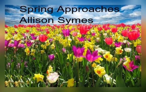 Feature Image - Spring Approaches