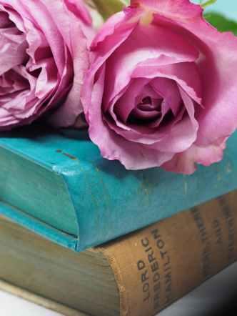 Photo by Plush Design Studio on Pexels.com