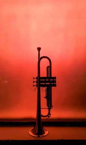 Photo by Luana Bento on Pexels.com