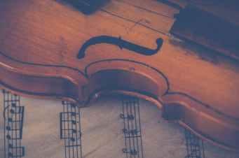 Photo by Ylanite Koppens on Pexels.com