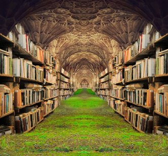 Libraries have always held a great attraction for me and I spent a lot of time in my school one