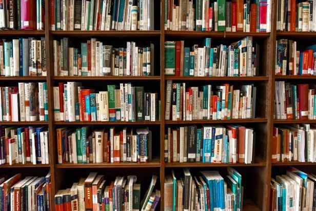 Photo by Element5 Digital on Pexels.com