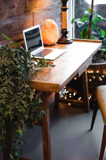 Photo by Andrea Davis on Pexels.com