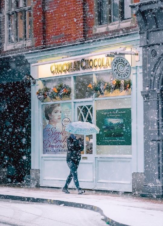 TTFF in Christmas Book Hub shop window