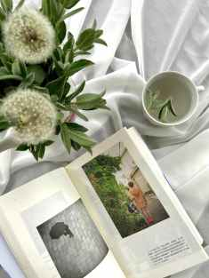 Photo by Sunsetoned on Pexels.com