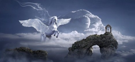 horse-3395135_640