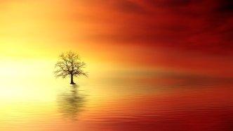sunset-3156440_640