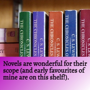 Novels are fantastic for their scope