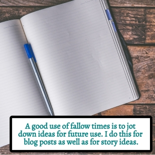 SEASONS IN WRITING - A good use of fallow times is to jot down ideas for future use