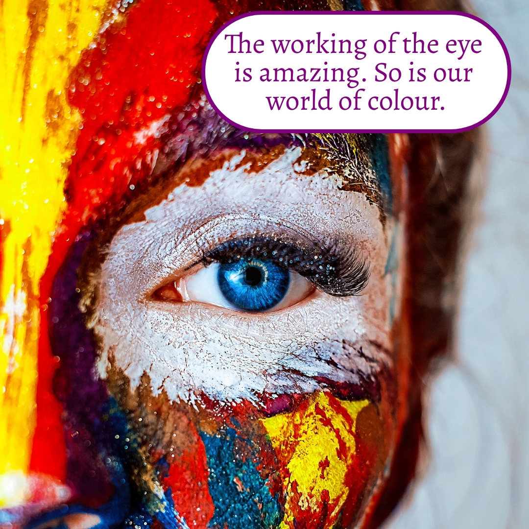 The working of the eye is amazing