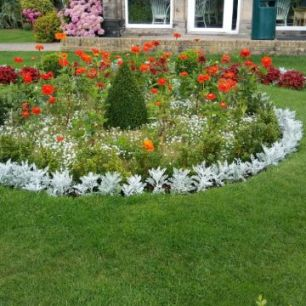 The flower beds have different varieties in each year. Some smaller tubs had strawberries growing in them!